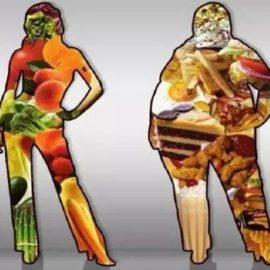 Você é o que você come